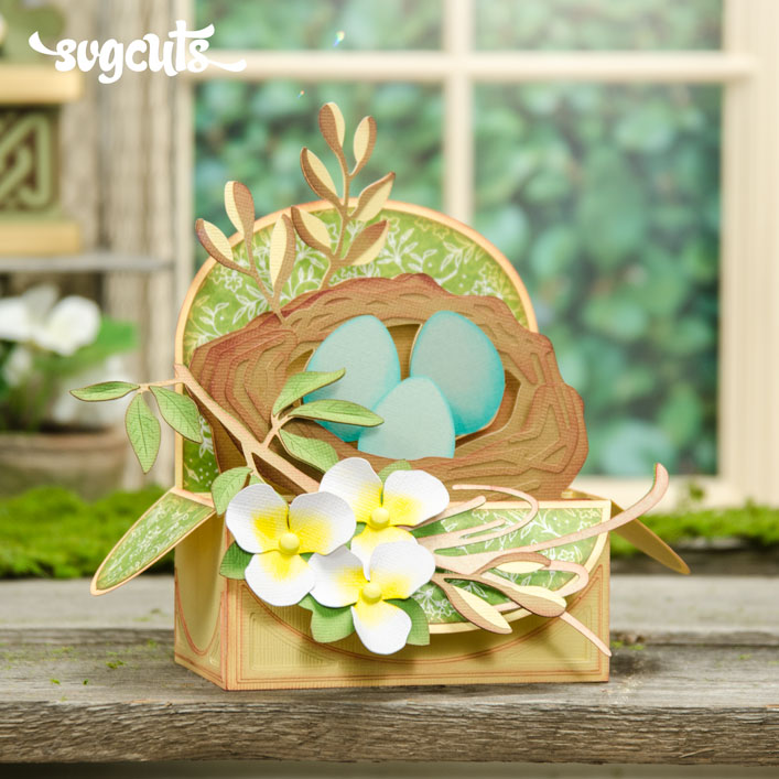 Bird's Nest Box Card