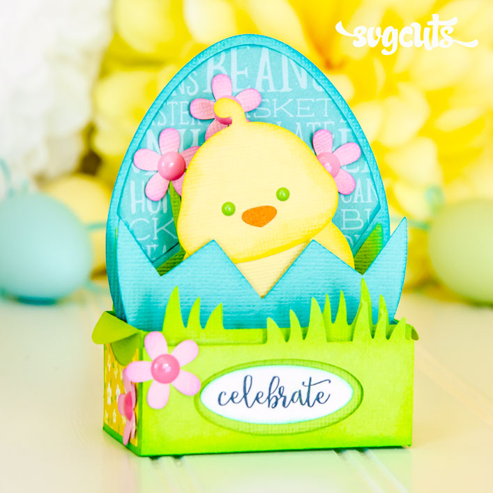 Hatching Chick Box Card