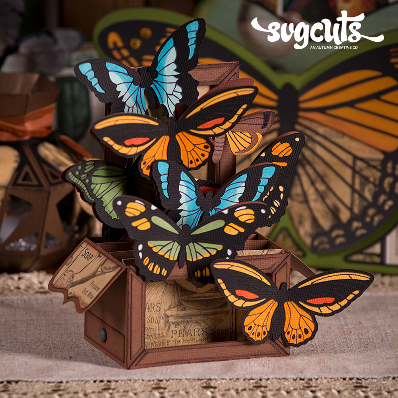 Butterflies Box Card - Click Image to Close