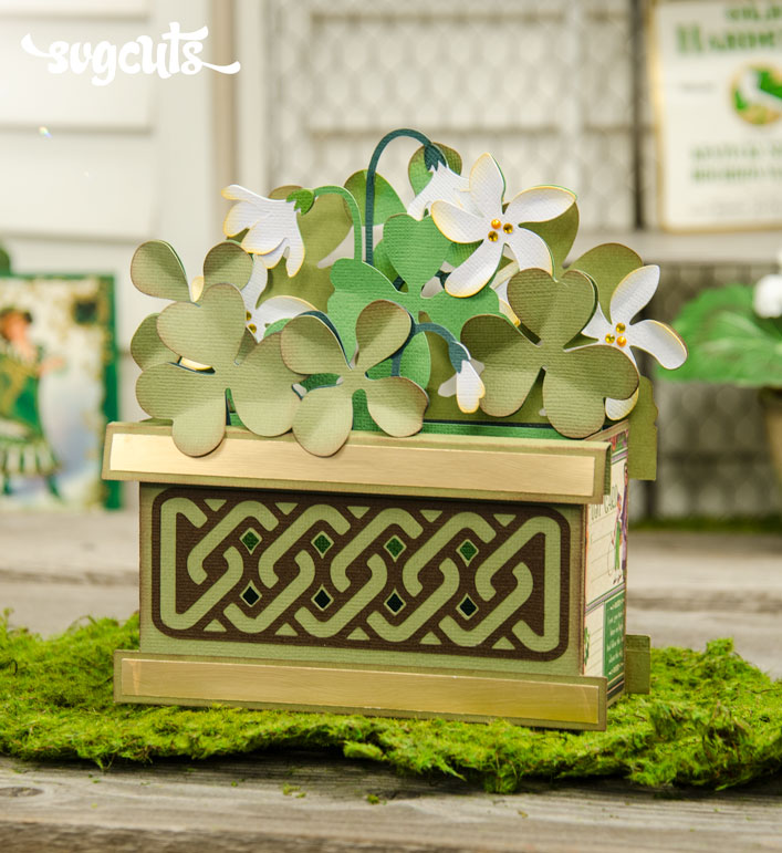 Lucky Clovers Box Card - Click Image to Close