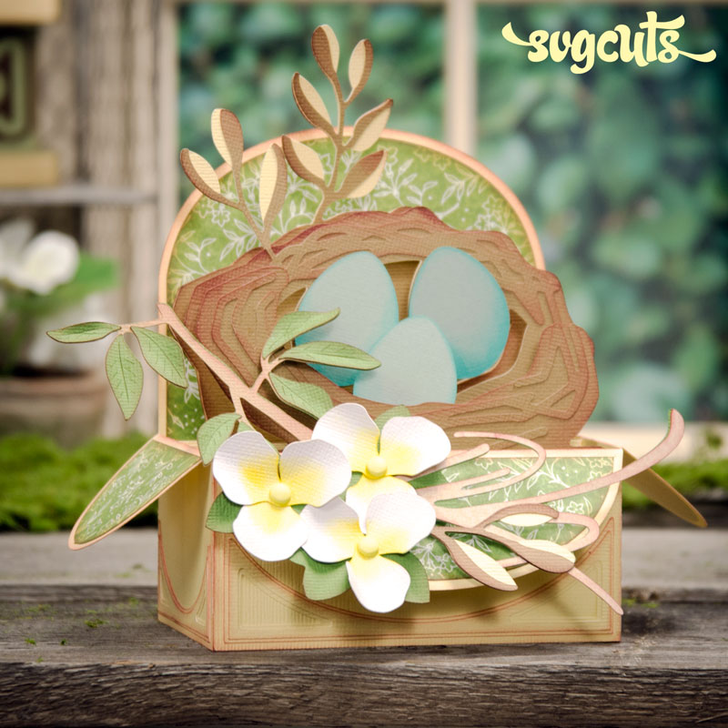Springtime Box Cards SVG Kit - Click Image to Close