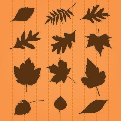 Serene Leaves SVG Collection