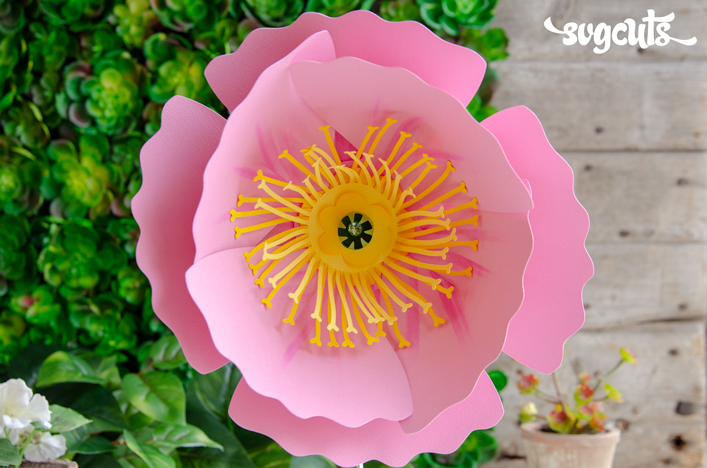 3D Flowers : SVG Files for Cricut, Silhouette, Sizzix, and